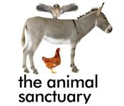 The Animal Sanctuary NZ
