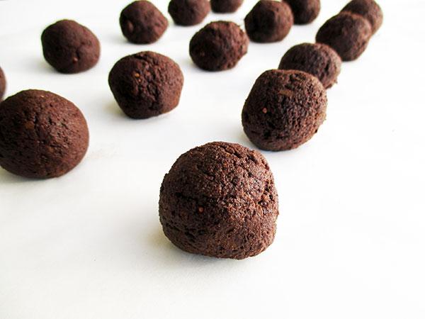 Vegan Gluten-free Grain-Free Flour-less Dark Chocolate Cookie Recipe