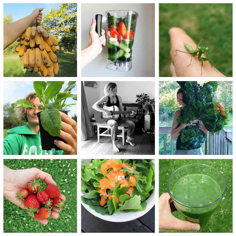 Das Vegan Monster Vegane Glutenfreie Rezepte Ohne Kristallzucker und Nachhaltiges Leben Uber Mich