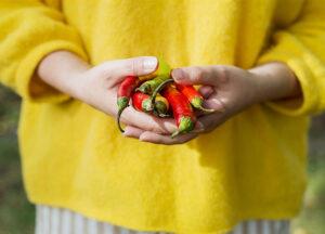 Kritische Nährstoffe bei Veganer Ernährung – Gastbeitrag von Anastasia Pyanova